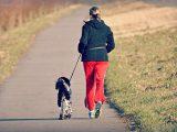 Czego się nauczyłam w trakcie 6 tygodni biegania